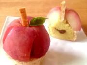 ポテッとりんごの写真