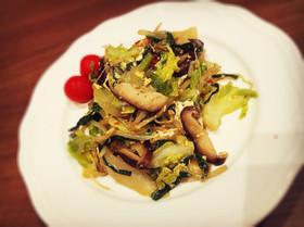 *ダイエット中の野菜炒め*