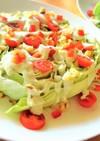 レタスの大きな輪切りサラダ
