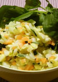春野菜で★山盛り!コールスロー サラダ