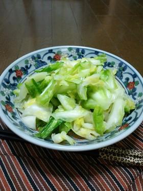 野菜イキイキ、浅漬けの人気レシピ集。食卓の実家的存在に癒される☆