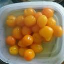 金柑のハチミツ甘露煮