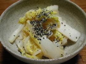 大根と白菜のゴマ風味サラダ