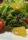 河内晩柑とプチトマトと新玉ねぎサラダ