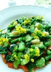鮮やかなグリーン野菜のトマトリゾット