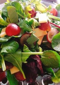 レッドグローブのサラダ♪バルサミコドレ