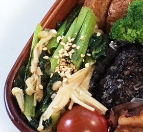 【お弁当】えのきと小松菜のバター醤油炒め