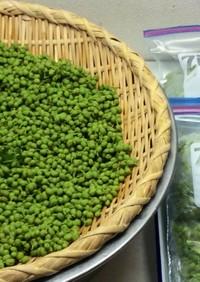山椒(さんしょう)の実 冷凍保存。