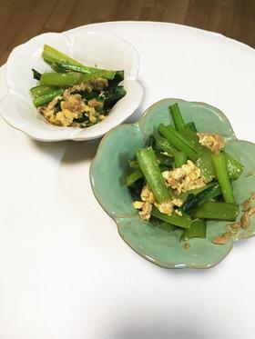 【時短】小松菜とツナの卵とじ!簡単お弁当