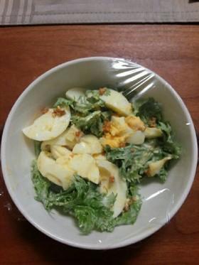 わさび菜と卵の簡単サラダ