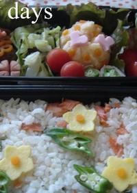 鮭の寿司飯