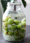 基本の「梅酒」の作り方
