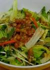 レタスと納豆のサラダ
