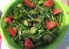 水菜の塩こんぶさっぱりサラダ♪