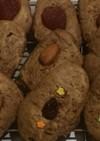 ココアソフトクッキー(HM)