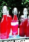 簡単❗紫蘇ジュースの作り方