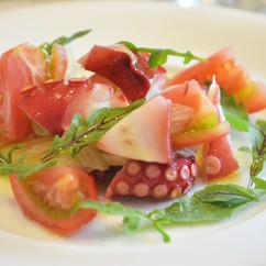 蛸とセロリのサラダ