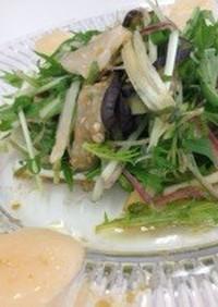 海鮮と水菜の薬味サラダ