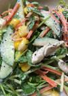 夏バテ 燃焼促進 栄養満点の豆苗サラダ