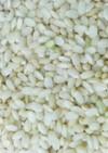 ヨーグルトメーカーで発芽玄米