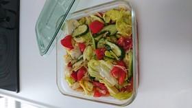 トマト&レタス&キュウリの漬け置きサラダ