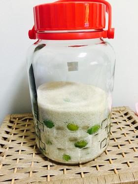 冷凍しない梅シロップ(梅の砂糖漬け)