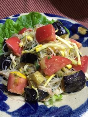 【京都丹波】揚げなすと夏野菜の春雨サラダ
