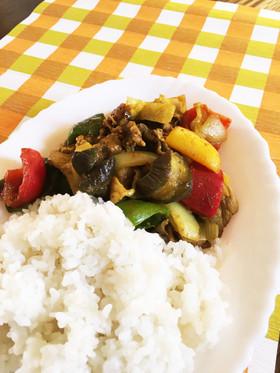 夏野菜の時短カレー
