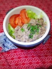 冷しゃぶ風 冷やし中華弁当の写真