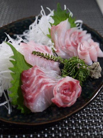 魚を捌こう!石鯛・石垣鯛の刺身編