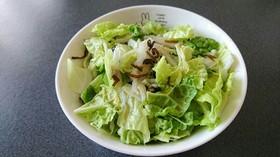 白菜と塩昆布の簡単サラダ