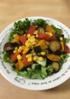 夏野菜のさっぱりサラダ