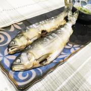 簡単♪フライパンで鮎の塩焼きの写真