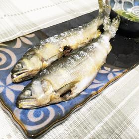 簡単♪フライパンで鮎の塩焼き
