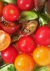カラフルなミニトマトのマリネ