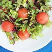 スイカとパクチーのサラダ