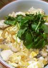 ガーコさんの親子丼:時短簡単なのに美味!