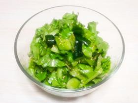 きゅうりとリーフレタスのナムルサラダ