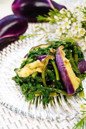 茹で食べ【空芯菜と茄子のお浸し】ポン酢