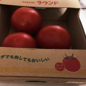 私的☆トマトの冷蔵保存