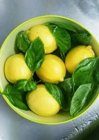 レモン&バジルのソース/夏の旬野菜