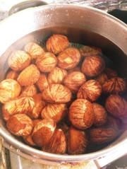 皮むき簡単な栗の茹で方。渋皮煮に最適!の写真