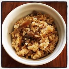鶏めし〜鶏の混ぜご飯〜
