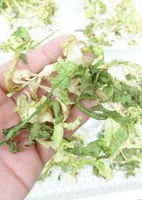 干し野菜作り(レタス)食品乾燥機ドラミニ