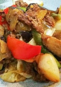 牛肉と茄子の甘味噌ピリ辛炒め
