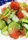 白菜ときゅうりの簡単サラダ