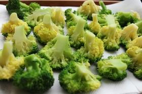 水っぽくないブロッコリーの茹で方と水切り