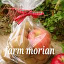 農園直伝❤キウィフルーツ保存と追熟123