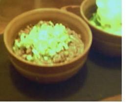 サラダ菜の肉味噌包み