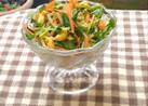 豆もやしと豆苗の彩りサラダ